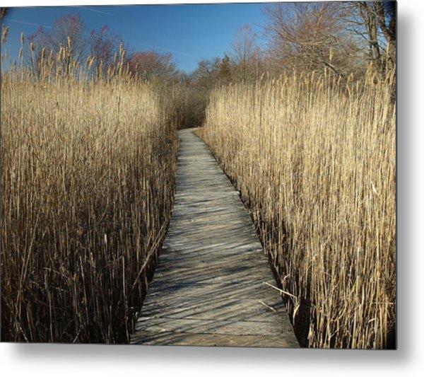 Parker River Wildlife Refuge Path Metal Print