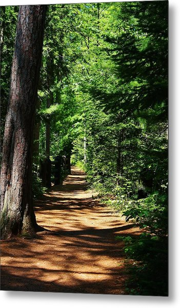 Pathway To Peacefulness Metal Print