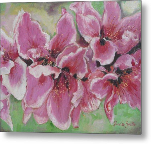 Peach Blossoms Metal Print by Gloria Smith