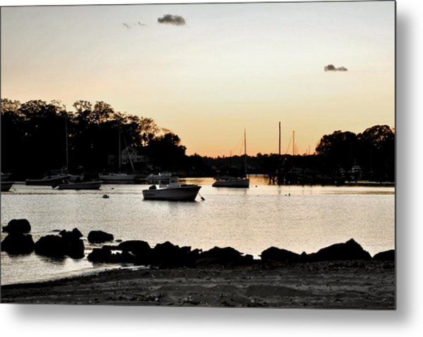 Pear Tree Point Metal Print by Laura DAddona