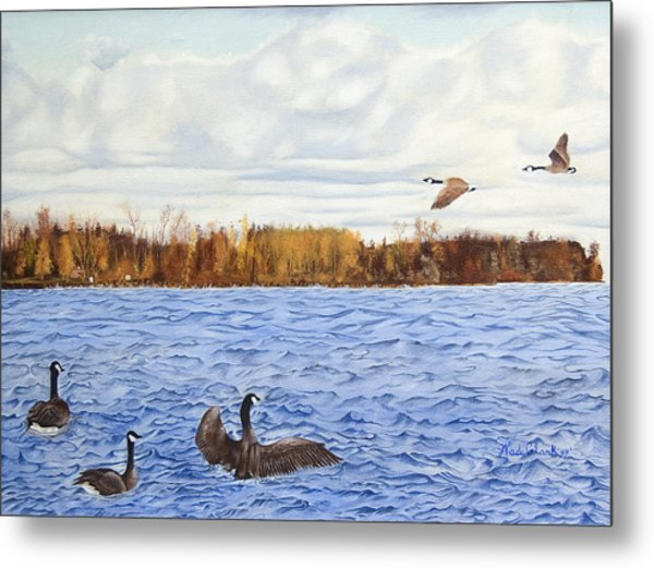 Metal Print featuring the painting Peche Island Canadas by Wade Clark