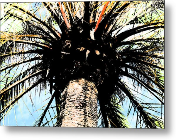 Perfect Palm Metal Print by Nanette Hert