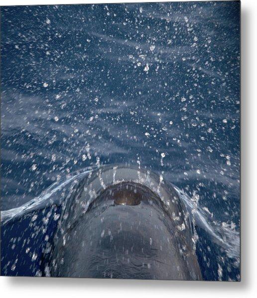 Pilot Whale 7 The Breath Metal Print