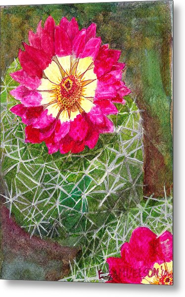 Pincushion Cactus Metal Print