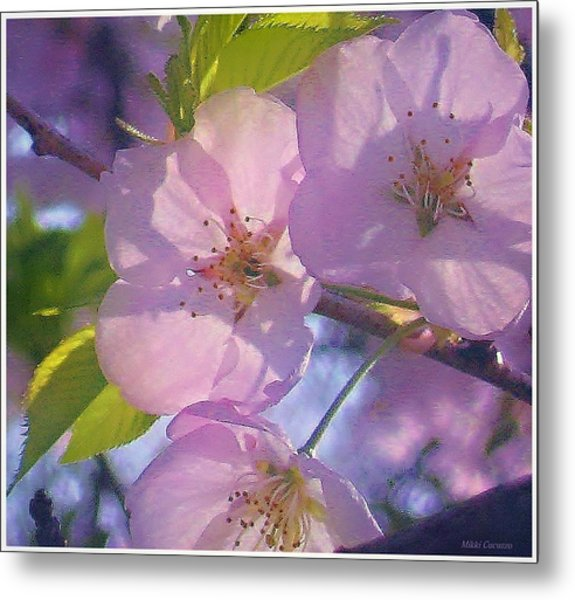 Pink Blossoms 2 Metal Print