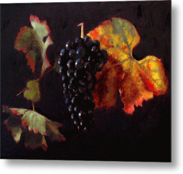 Pinot Noir Grape With Autumn Leaves Metal Print by Takayuki Harada