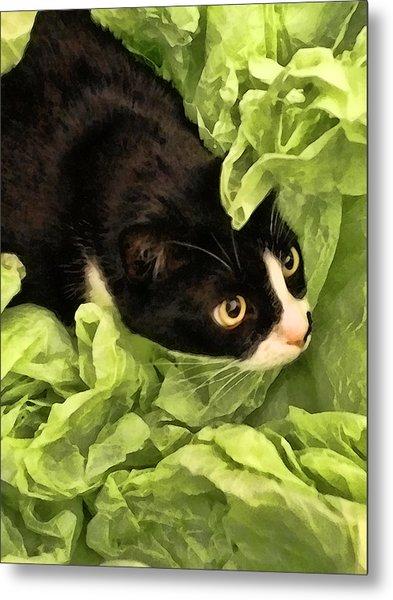 Playful Tuxedo Kitty In Green Tissue Paper Metal Print