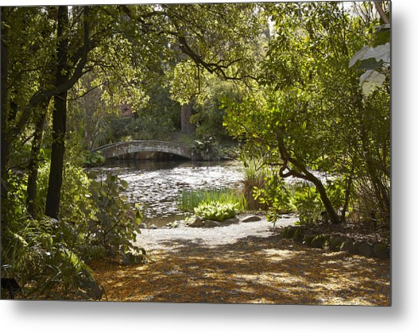 Pond View With Kowhai Petals Metal Print by Geoff Bryant
