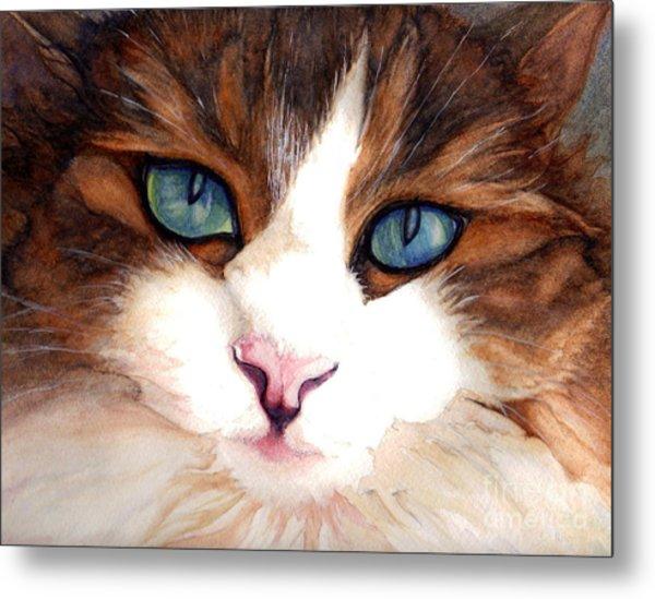 Portrait Of A Cat Metal Print