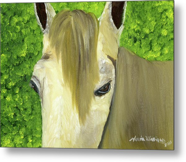 Portrait Of A Curious Horse Metal Print by Maria Williams
