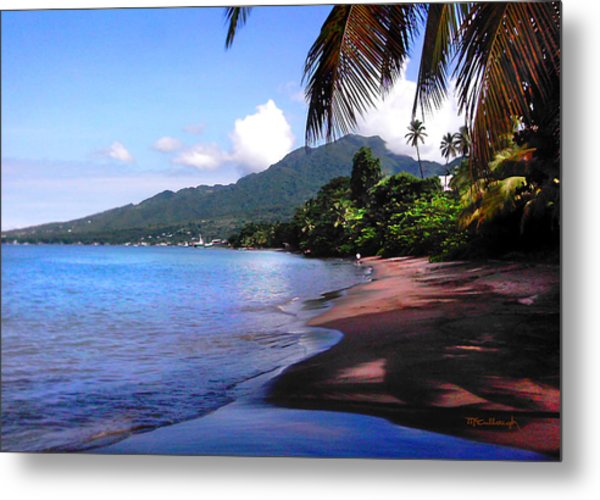 Portsmouth Shore On Dominica Filtered Metal Print