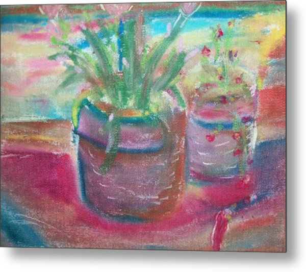 Potted Plants Metal Print by Bob Smith
