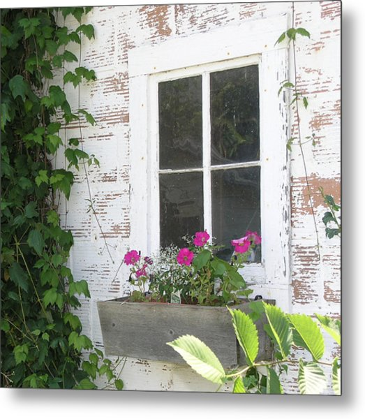 Potting Shed Window Metal Print by Janis Beauchamp