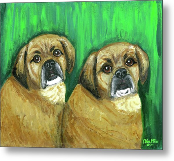 Puggles Bruno And Louie Metal Print