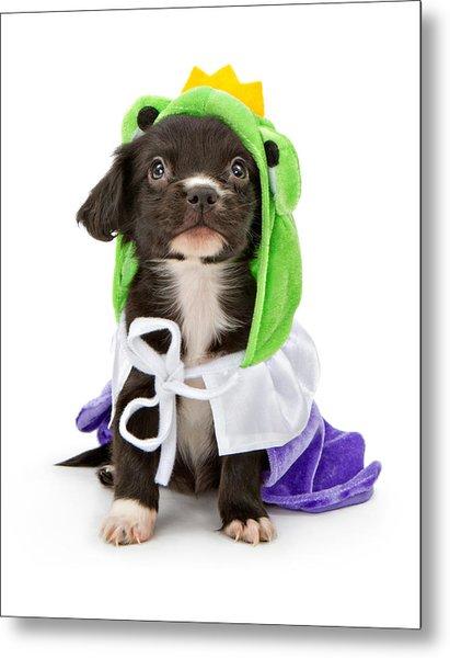 Puppy Frog Prince Metal Print