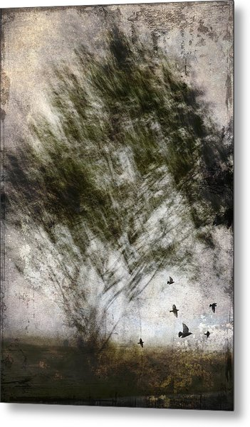 Quickly Metal Print