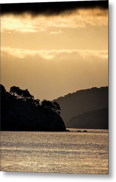 Raccoon Strait Metal Print