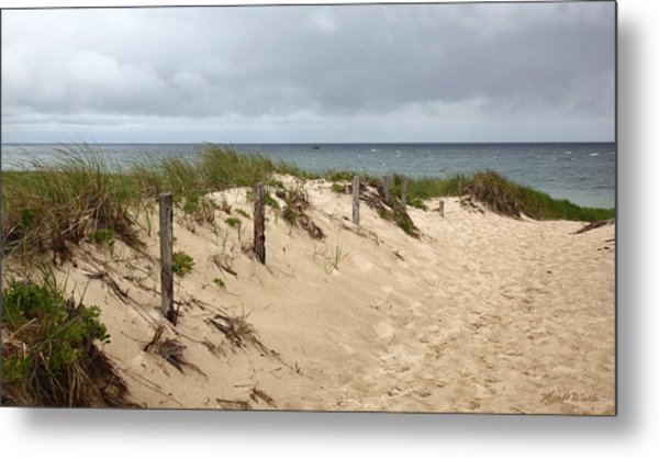 Race Point Beach Provincetown Massachusetts Metal Print