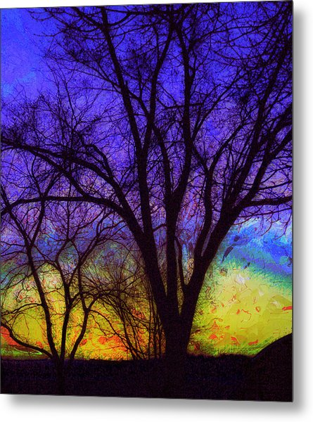Rainbow Morning Metal Print