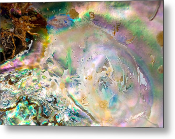 Rainbows And Seaweed Metal Print by Joy Gerow