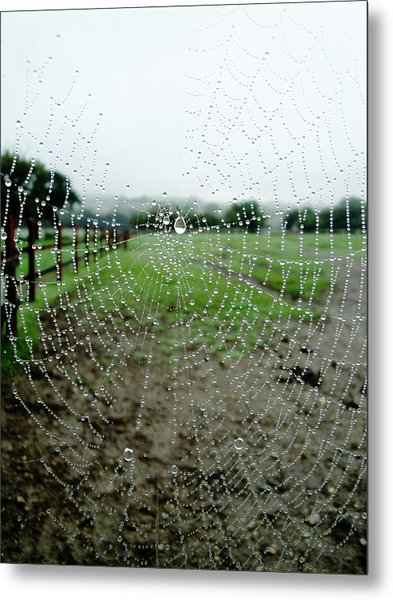 Raincatcher Web Metal Print