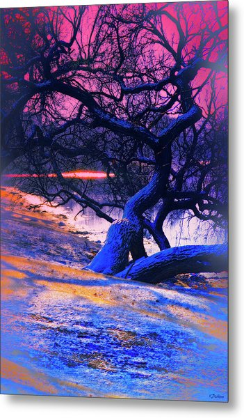 Reclining On The Banks Metal Print