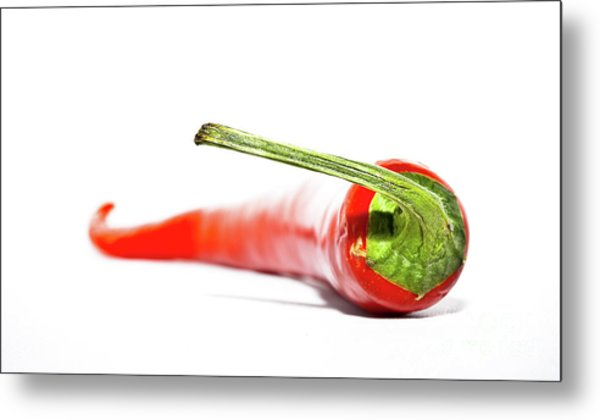 Red Chili Metal Print by Agusta Gudrun  Olafsdottir