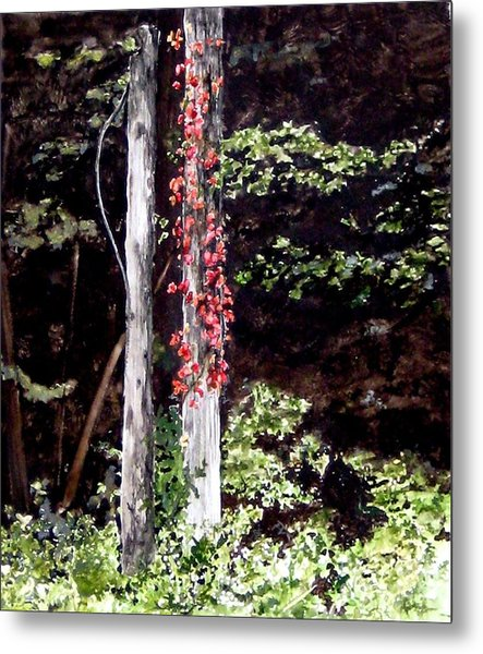 Red Creeper Metal Print by Carla Dabney