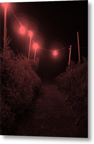 Red Night Metal Print by John  Bichler