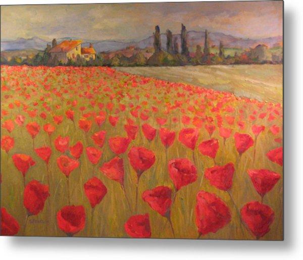 Red Poppy Field Metal Print by Sam Pearson