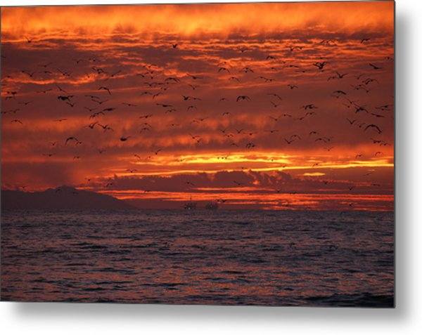 Red Sky  Metal Print by Wendy  Coloma