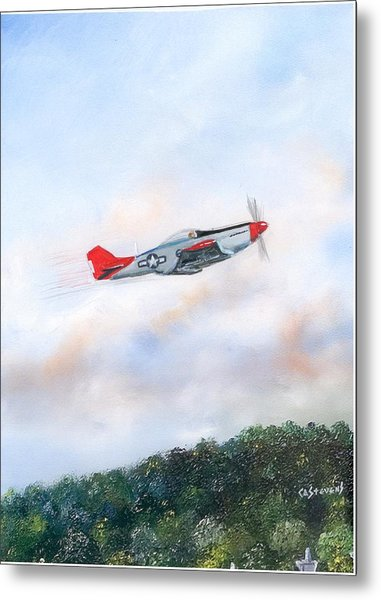 Red Tails Metal Print