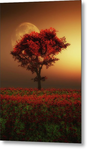 Red Tree In The Evening Metal Print