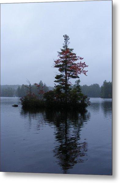 Red Tree Island Metal Print by Alison Heckard