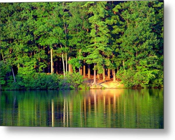 Reflections At Farrington Lake 6 Metal Print