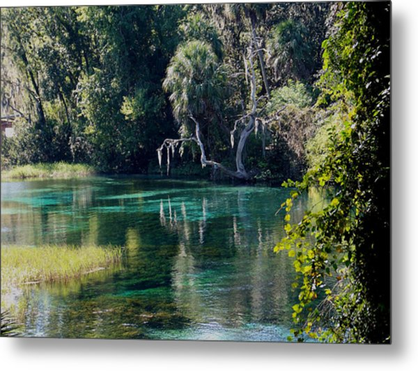 Reflections Of Rainbow Springs 2 Metal Print