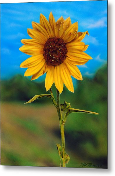 Reminiscing Glorious Summer Days Metal Print by Rick Primeau