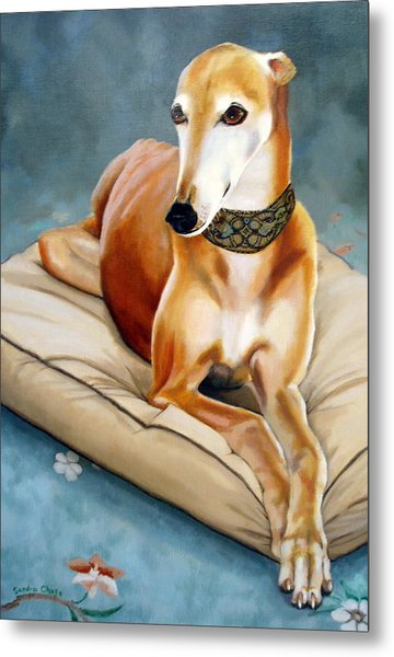 Rescued Greyhound Metal Print