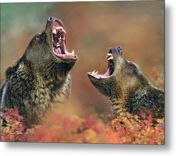 Roaring Bears Metal Print