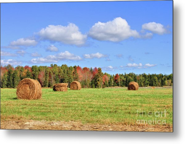 Rolls Of Hay On A Beautiful Day Metal Print