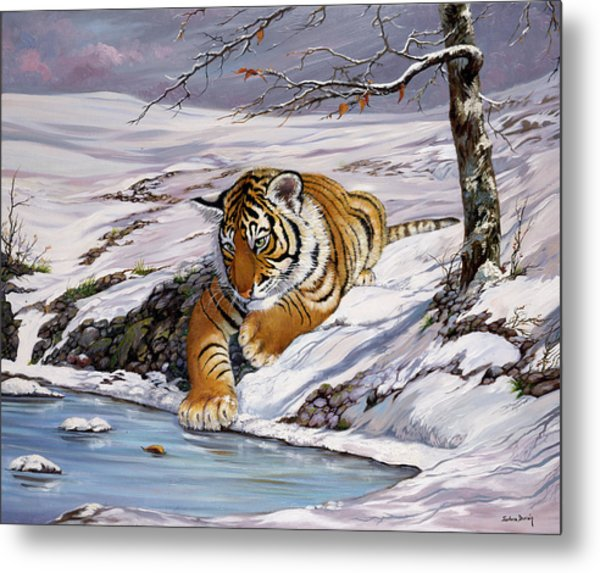 Roque Playing In The Ice Pond Metal Print by Silvia  Duran