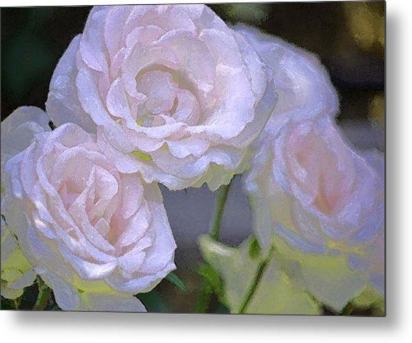 Rose 120 Metal Print