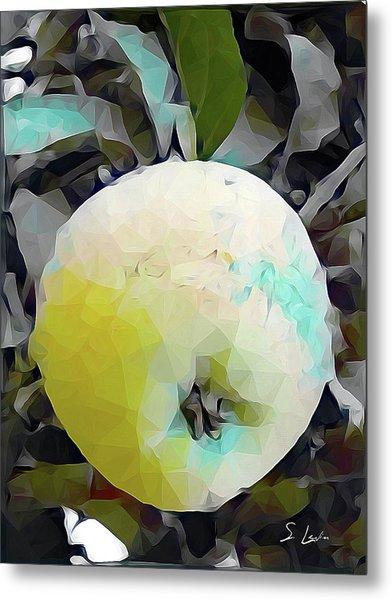 Round Fruit Metal Print