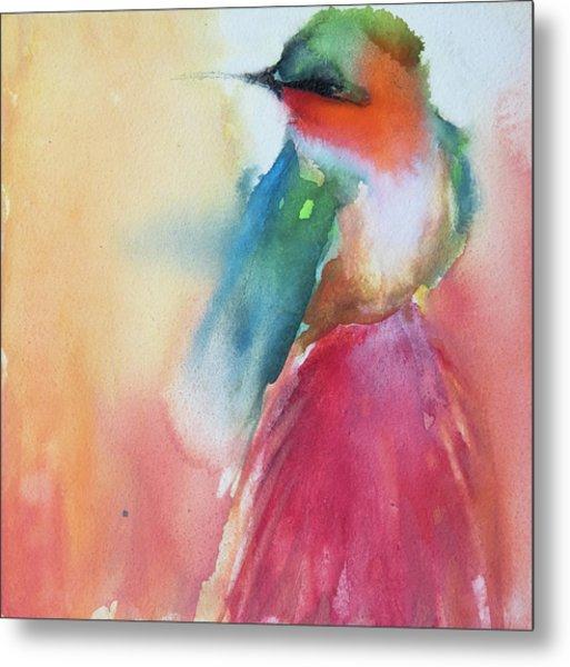 Ruby Throated Hummingbird On A Red Hot Poker Flower Wip Metal Print
