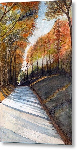 Rural Route In Autumn Metal Print