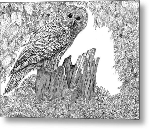 Russian Owl Metal Print by Leonie Bell