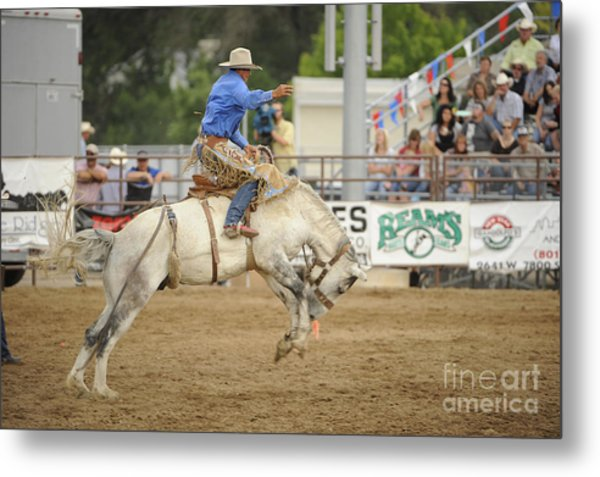 Saddle Bronc Metal Print by Dennis Hammer