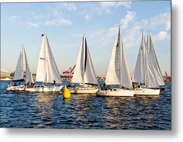 Sail Race Metal Print by Tom Dowd