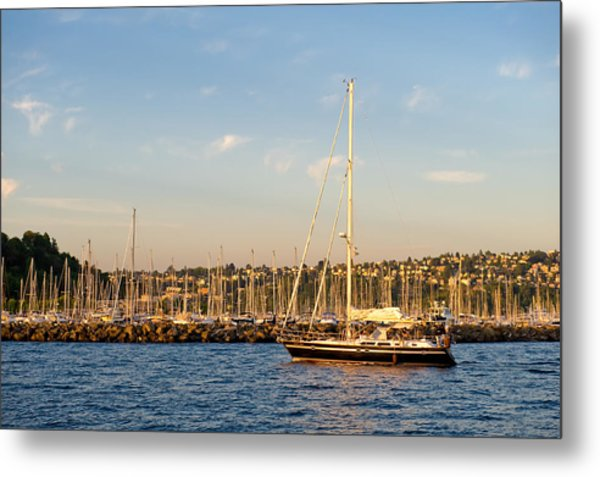 Sailboat Marina Metal Print by Tom Dowd