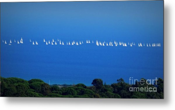 Sailing The Sea And Sky Metal Print